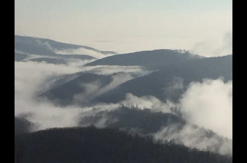 Foggy morning - view from Rock Castle Gorge overlook